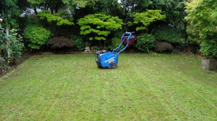 Do You Let Your Lawn Breathe?