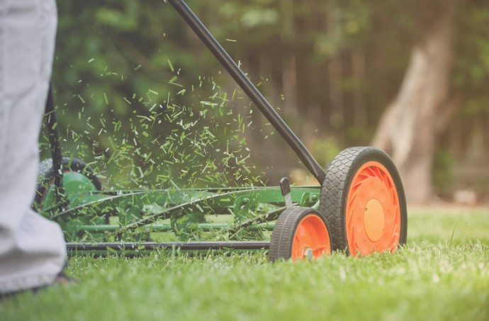 What Is The Best Way to Handle Lawn Clippings?