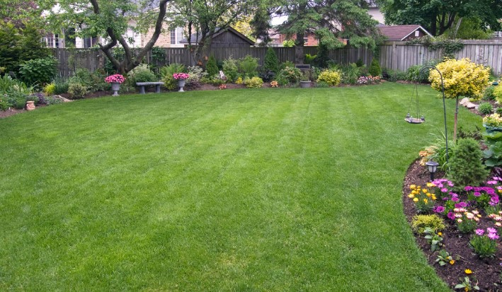 Fall Lawn Care – DIY vs Landscaping Company!