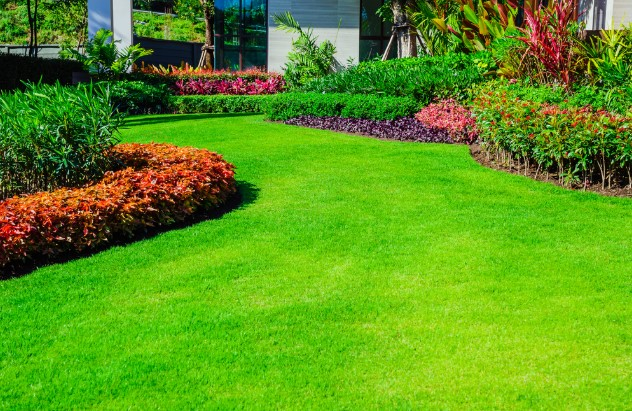 What Are The Keys To Having A Great Lawn?