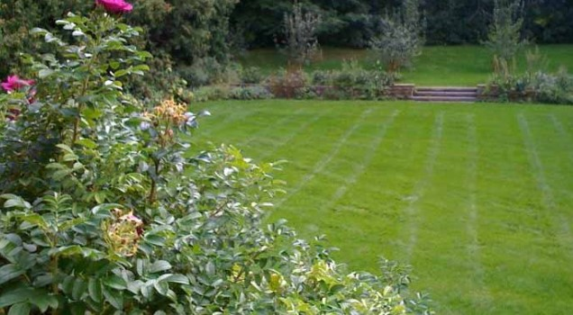 Lawn Pride And How It Can Infect You!