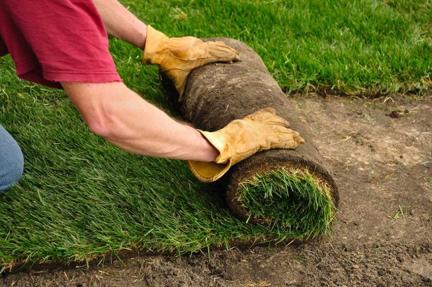 Consider the Benefits of Laying Grass Sod!