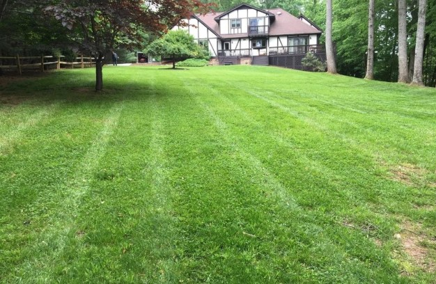 A Helpful Guide To Prepare Your Lawn For Spring!