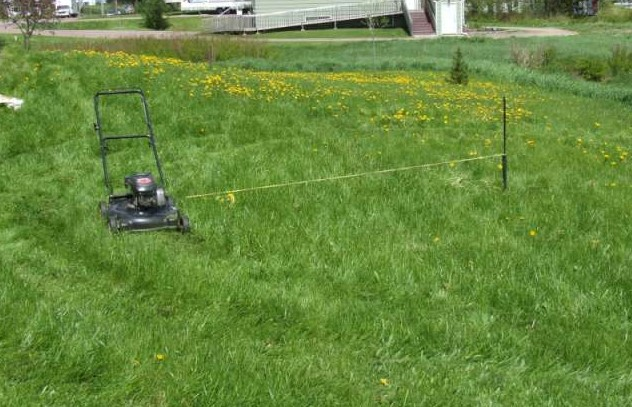 Rows Or Circles – Which Lawn Mowing Pattern Works The Best?