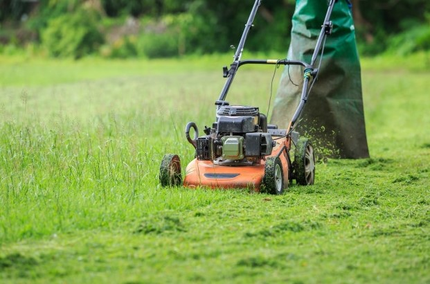 How Proper Mowing Affects Your Lawn!