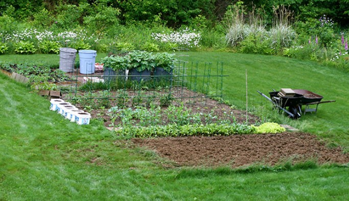 Benefits of Using Organic Lawn Fertilizer