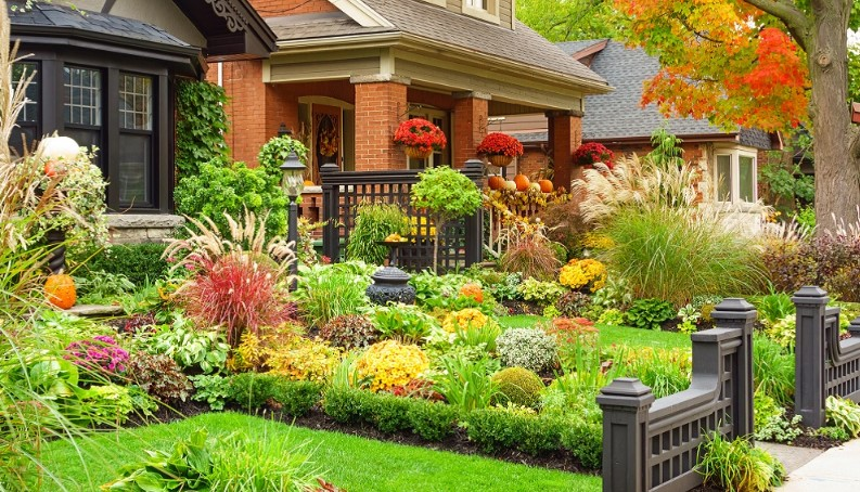 How to Enjoy Fall Landscaping!
